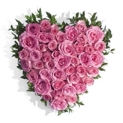 valentine special rose