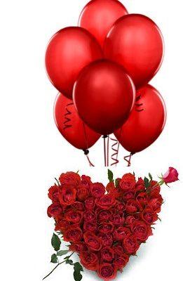 valentine day special rose dehradun