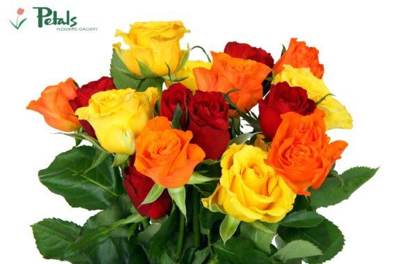 Top Summer Flower Delivery in Dehradun
