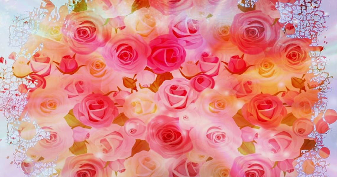 The 7 Most Beautiful Flowers For All Occasions